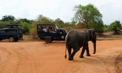 parcs nationaux de Yala